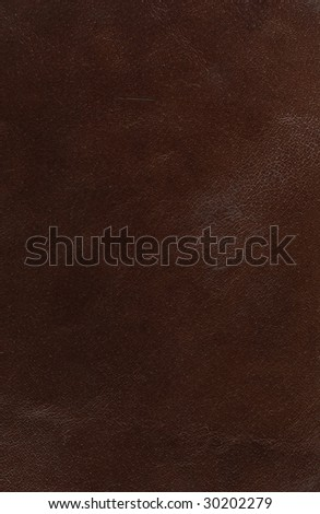 High Resolution Close-up Of Genuine Leather - stock photo