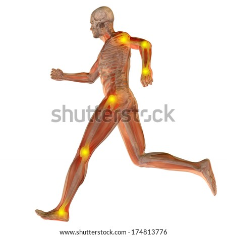 High resolution concept or conceptual 3D human anatomy body with pain isolated on white background as a metaphor to health,medicine,medical, biology,osteoporosis, arthritis, joint,inflammation or ache - stock photo