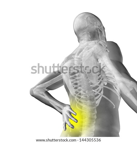 High resolution concept or conceptual 3d human male or man anatomy isolated on white background as metaphor to pain,back,body,spine,backache,medical,injury,medicine,health,hurt,painful,spinal  therapy - stock photo