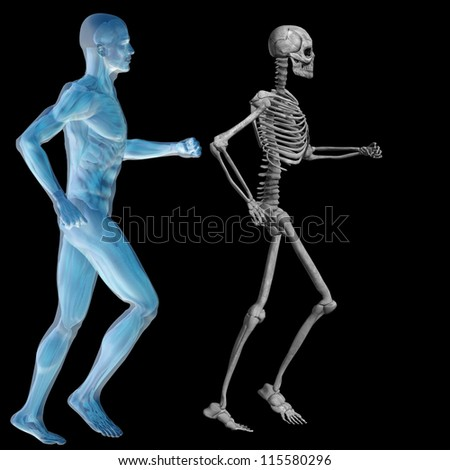 High resolution conceptual 3D human ideal for anatomy,medicine and health designs, isolated on black background. It is a man made of a skeleton and a transparent blue body as in a x-ray - stock photo