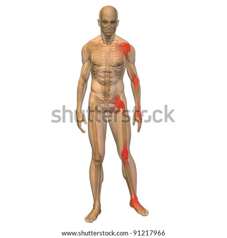 High resolution conceptual 3D human ideal for anatomy,medicine and health designs, isolated on white background. It is a man made of a skeleton and a transparent body as in a x-ray - stock photo