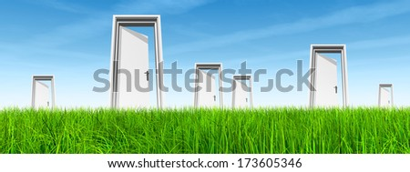 High resolution green, fresh and natural 3d conceptual grass over a blue sky background and opened doors at horizon ideal for religion, home, recreation, faith, business, success,opportunity or future - stock photo