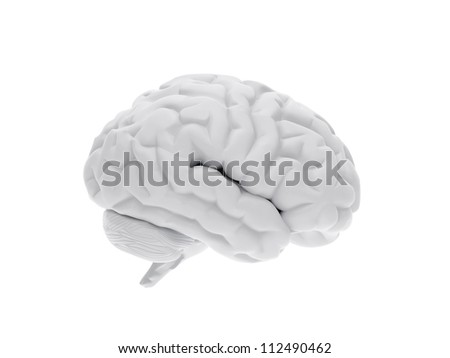 High resolution image. 3d rendered illustration. 3d human brain. - stock photo