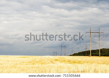 high-voltage lines in the field