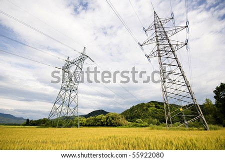 High voltage power lines above wheat field - stock photo