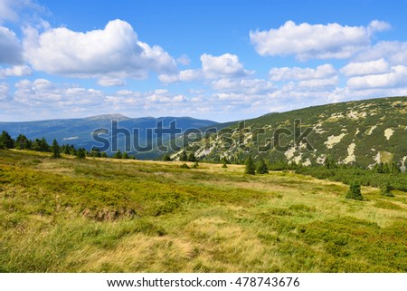 Highland slopes and meadows in green summer with white clouds sky