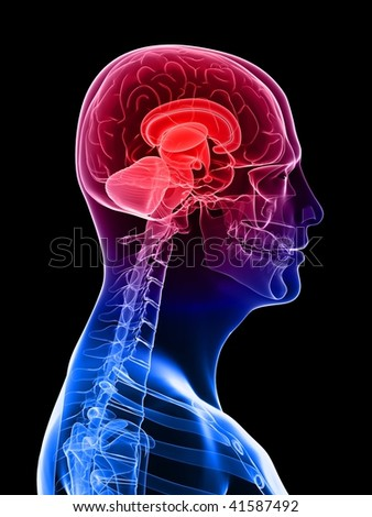 highlighted brain /headache - stock photo
