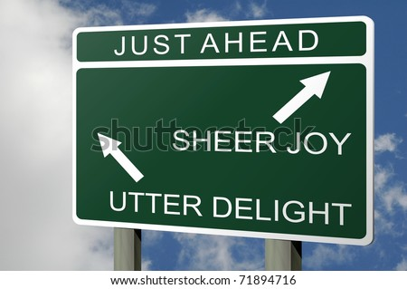 Highway road sign showing direction as emotions in life