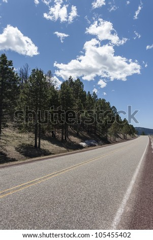 Highway through forest in lower angle - stock photo