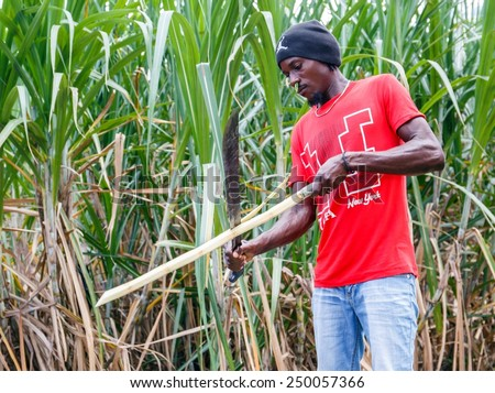 higuey men The history of puerto rico began with the settlement  ponce de leon was actively involved in the higuey  hundreds of men and women in the town of.