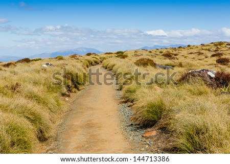 Hike in New Zealand - stock photo