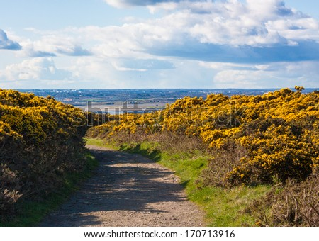 Hike trail on Howth cliffs with a view of Howth on a sunny day - stock photo