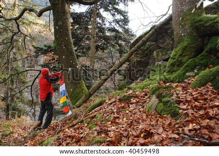 hiker in the forest with prayer flags
