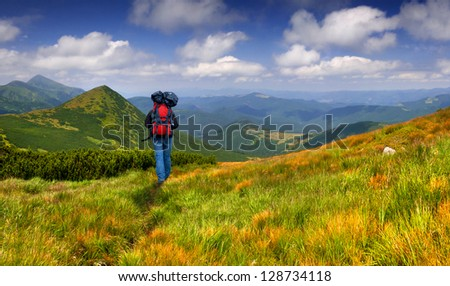 Hiker in the summer mountains