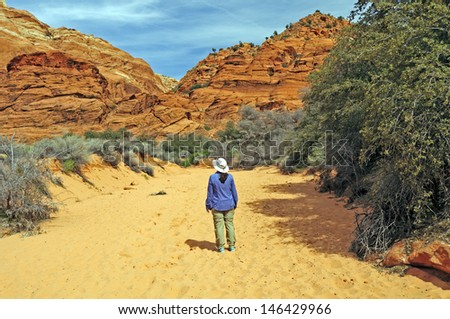Hiker on the Three Ponds Trail in Snow Canyon State Park in Utah - stock photo