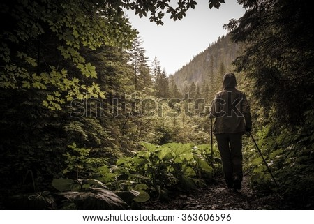 Hiker with hiking poles walking in a mountain forest  - stock photo
