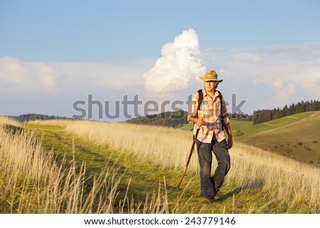 Hiker with stick on meadow with mountains - stock photo