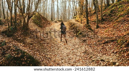 Hiker woman walking in beautiful autumn forest, rear view. Dry yellow leaves on land. Hiking and leisure theme - stock photo