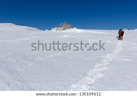 hikers in a winter plain