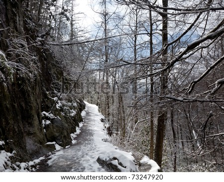 Hiking a snow covered path in the Smoky Mountains in winter - stock photo