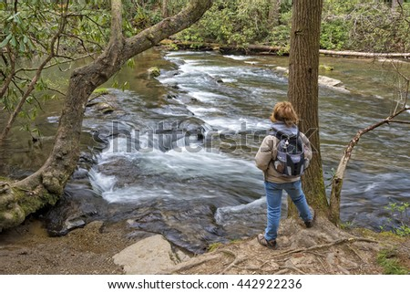 Hiking Along Abrams Creek At Cades Cove In The Great Smoky Mountain National Park In Tennessee - stock photo