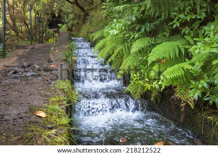 Hiking along Madeira's historic water supply system, Portugal - stock photo