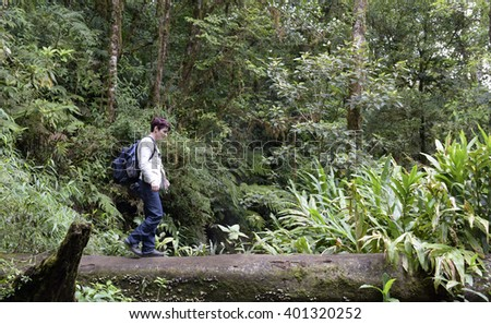 Hiking in a rain forest - stock photo