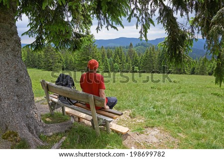 hiking man, Black Forest, Germany - stock photo