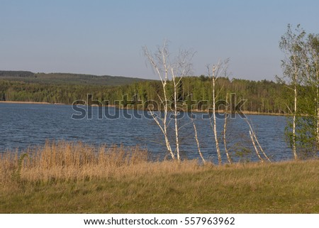 hiking next to the Steinberger See next to Schwandorf in Bavaria in Spring