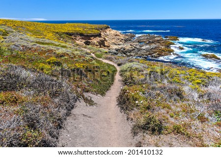 Hiking path along the Pacific Ocean in Garrapata State Park - stock photo