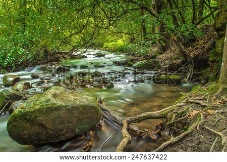 Hiking The Smokies. Stream along a hiking trail in the Great Smoky Mountains National Park. Gatlinburg, Tennessee. - stock photo