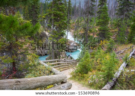 Hiking Trail along Turquoise River in Mountainous Marble Canyon, British Columbia, Canada.  Fire damaged trees in background. - stock photo