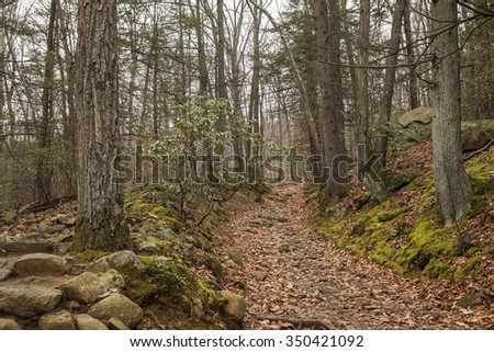 hiking trail in bear mountain state park - stock photo