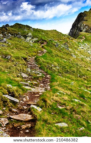 Hiking trail in Carpathian mountains in the summer  - stock photo