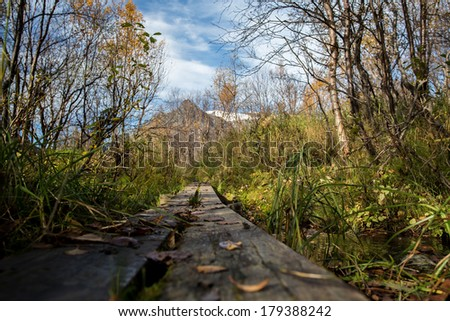 hiking trail in Lapland - sweden in autumn - stock photo
