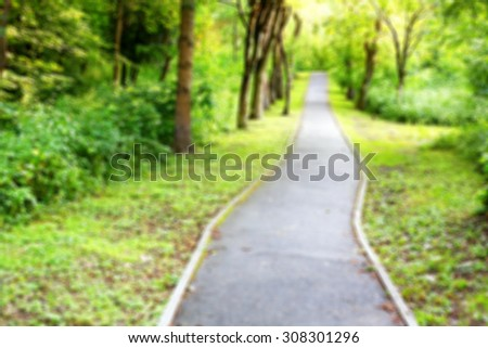 Hiking trail in the forest blurred background - stock photo
