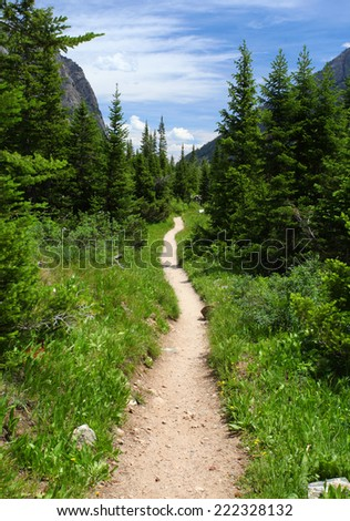Hiking trail in the wilderness - stock photo