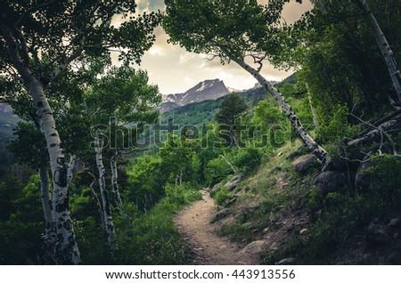 Hiking trail leading to mountain range. - stock photo