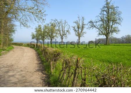 Hiking trail through farmland in sunlight in spring - stock photo