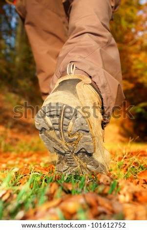 hiking view from the ground - stock photo