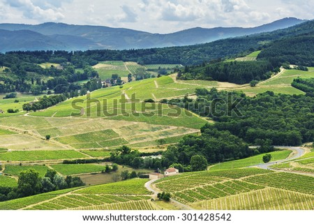 Hill and vineyards, Beaujolais, France - stock photo
