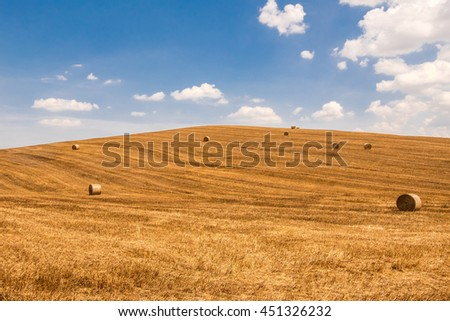 Hill of Tuscany in summer