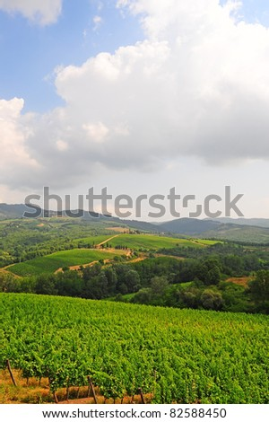Hill Of Tuscany With Vineyards In The Chianti Region