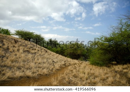 Hills near Hapuna beach, Big Island, Hawaii - stock photo