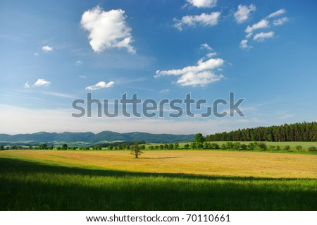 Hills scenery with lonely tree - stock photo