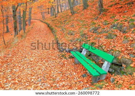 Hillside alley covered with fallen leaves and green bench in autumn, Karlovy Vary, Czech Republic - stock photo