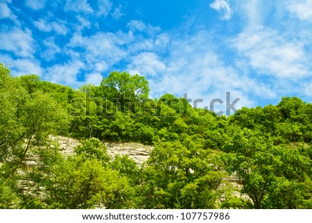 hillside with bushes at sunny summer day