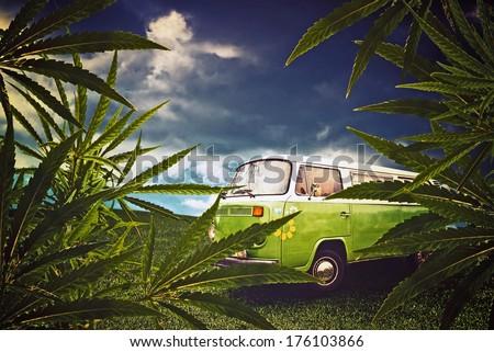 Hippie van and marijuana leaves in the fields. - stock photo