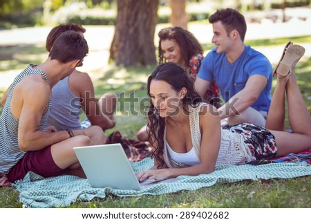 hipster using laptop in the park on a sunny day