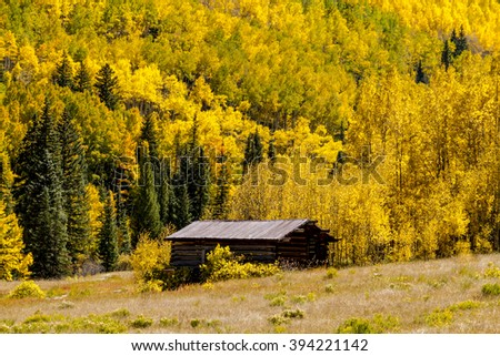 Historic abandoned building of Colorado ghost town near Aspen CO, surrounded by fall color of the changing yellow Aspen trees - stock photo